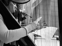Duo, violino e arpa